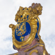 The golden emblem of Hesse in germany, the lion — Stockfoto