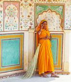 ゴルヒ ・ フォックについてクラス色鮮やかなサリーの女性きれい琥珀 pa — ストック写真