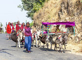 A Rajasthani tribal family moves to the next living ground — Stock Photo