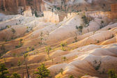 Beautiful landscape in Bryce Canyon with magnificent Stone formation like Amphitheater, temples, figures in Morning light — Stock Photo