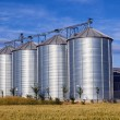 Four silver silos in corn field — Stock Photo #17129999