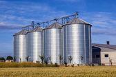 Four silver silos in corn field — Stock Photo