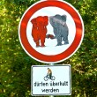 Sign forbidden for elefants in love and bicycle overtaking allow — Stock Photo #17169671