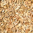 Wood shavings on the floor - Stock Photo