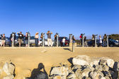 Tourists are watching the famous seal rock near Point Lobos — Stock Photo
