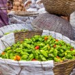 Colorful spices in Bangladesh — Stock fotografie