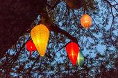 Lampignons in blue sky — Stock Photo
