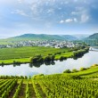 Famous Moselle Sinuosity with vineyards — Stock Photo #17612319