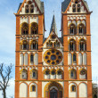 Gothic dome in Limburg, Germany in beautiful colors — Stock Photo #17633519