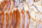 Frischer fisch auf dem markt — Stockfoto