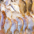 Fish at the market - Stock Photo