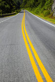 Scenic country road curves through Shenandoah National Park — Stock Photo