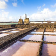 Stock Photo: Salt refinery, Saline from Janubio, Lanzarote, Spain