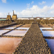 Salt refinery, Saline from Janubio, Lanzarote, Spain — Stock Photo