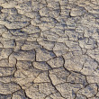 Stock Photo: Loam in saline basin