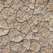 Loam in a saline basin — Stock Photo