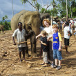 Children hug with elephants in the jungle camp — Stockfoto