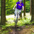 Downhill biker jumps over ramp in forest — Stock Photo #18415521