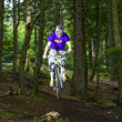 Downhill biker jumps over ramp in forest — Stock Photo #18416227