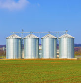 Silver silos in field — Stock Photo