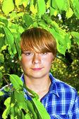 Portrait of cute boy in leaves — Stock Photo