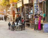 Woman with ox and her goats pass the old bazaar street — Stock Photo