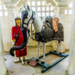Horse Chetak in palace — Stock Photo #19027427