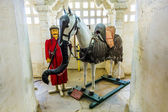 Horse Chetak in the palace — Stock Photo