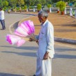 Sales at India gate offer cotton candy to indian tourists — Stock Photo