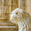 The water lion in the beautiful Jeronimos Monastery in Lisbon — Stock Photo #19431023