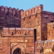 Red Fort in Agra, Amar Singh Gate, India, Uttar Pradesh  — Stock Photo #19505437