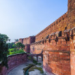 Red Fort in Agra, Amar Singh Gate, India, Uttar Pradesh — Stock Photo #19505705