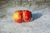 Verse appelen met grappige vervormingen — Stockfoto
