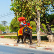 Royalty-Free Stock Photo: Tourists ride on an elephant in the Historical Park