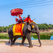 Stock Photo: Tourists ride on elephant in Historical Park