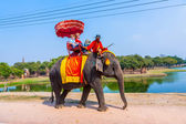 Tourists ride on an elephant in the Historical Park — Stock Photo