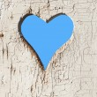 Heart shape look out on wooden door to outhouse. — Stockfoto