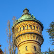 Famous watertower in Biebrich, Wiesbaden - Stockfoto