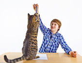 Smart boy learning for school has a break and plays with his cat — Stock Photo