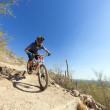 Downhill bike rider — Stock Photo