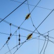 Railroad overhead lines against clear blue sky — Stock Photo #20507697