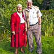 Elderly couple standing hand in hand in their garden — Stock Photo