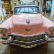 Постер, плакат: Pink 1956 Cadillac at the airport