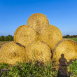 Bale of straw in autumn in intensive colors — Stock Photo