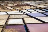 Famosas salinas de janubio en lanzarote, islas canarias, españa — Foto de Stock