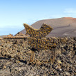 Timanfaya National Park in Lanzarote, Canary Islands, Spain — Stock Photo