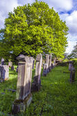 Jewish cemetery in St. Wendel at the Galgenberg — Stock Photo
