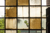 Pattern of old broken industry window gives a harmonic backgroun — Stock Photo