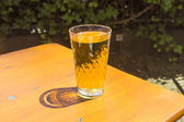Cidre brýle stojící na venkovní stůl na slunci jako symbol — Stock fotografie