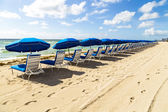 Umbrellas and empty beach couches at the beach — Stock Photo